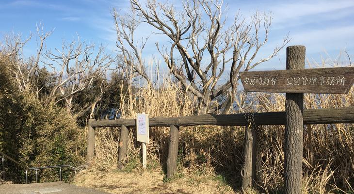 城ヶ島東磯へのアクセス5