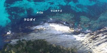 水垂クロダイ釣りポイント