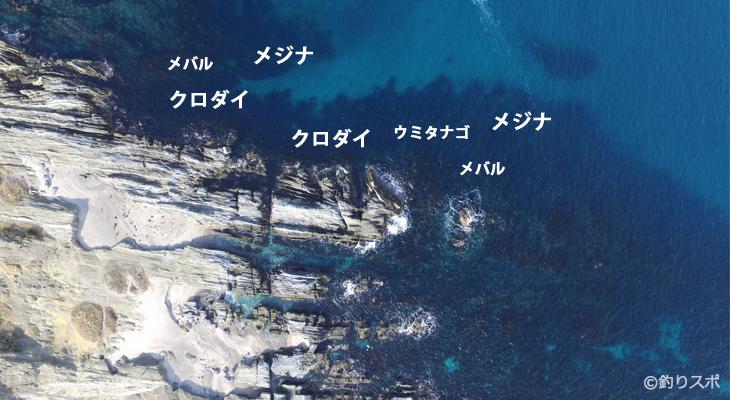 潮見クロダイ・メジナ釣りポイント