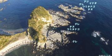 全体図魚種地図