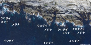 城ヶ島展望台下釣りスポット