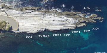 灘ヶ崎釣りポイント情報