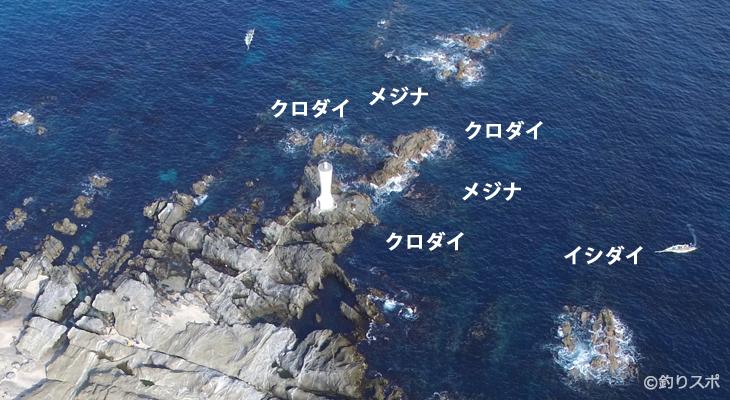 安房崎石鯛・クロダイ・メジナ釣りポイント