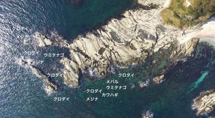剱崎平島の磯
