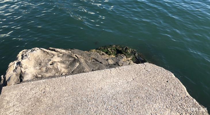 小戸港釣り座1
