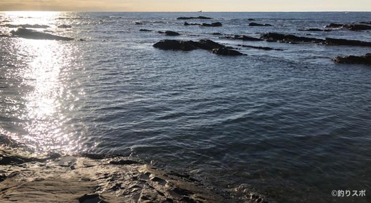 トチの入り江釣り座3