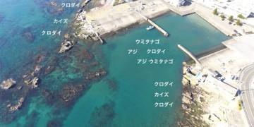 小戸港空撮