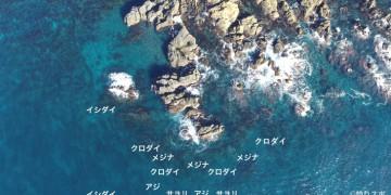 ナラ島空撮