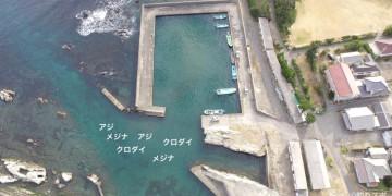 野島東港空撮