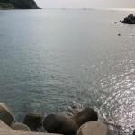 小浦港釣り座1
