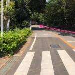 駐車場の右側の道路を進む。