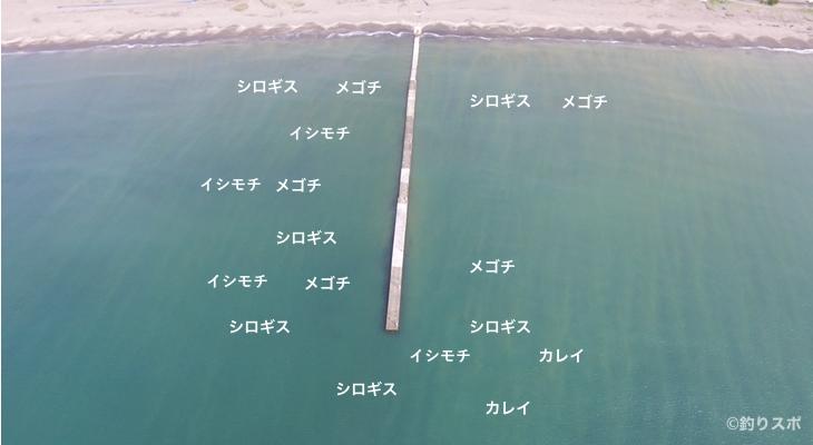 岡本桟橋釣り場