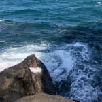 ④水深が深く足元でも良型が釣れる。