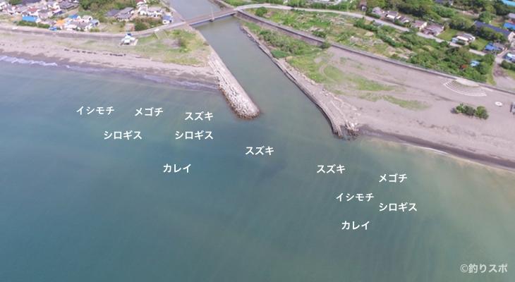 岡本川河口空撮