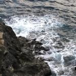 ②潮通しの良い釣り座で足元でクロダイやメジナが釣れ、青物も狙える。