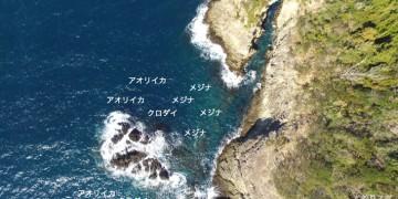 日和山空撮釣り場情報