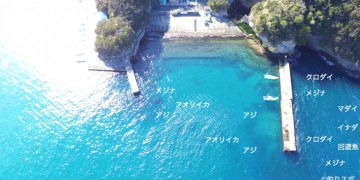 岩地港空撮釣り場情報