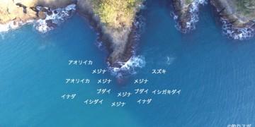 スズキ島空撮釣り場情報