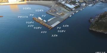 松崎港空撮釣り情報