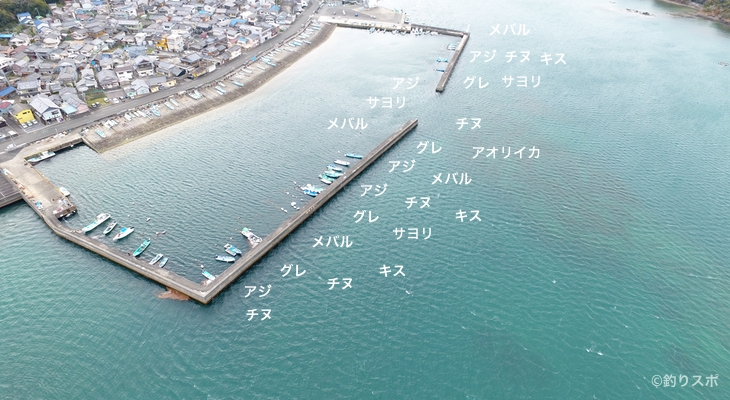 浜島港空撮釣り場情報