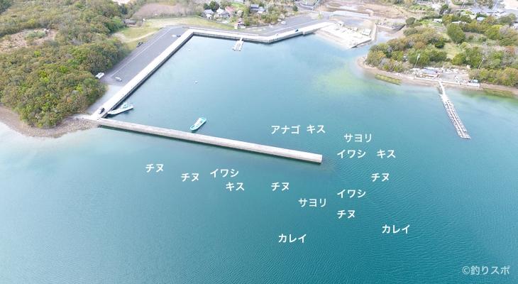 神明港空撮釣り場情報