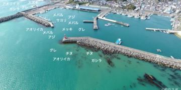和具港空撮釣り情報