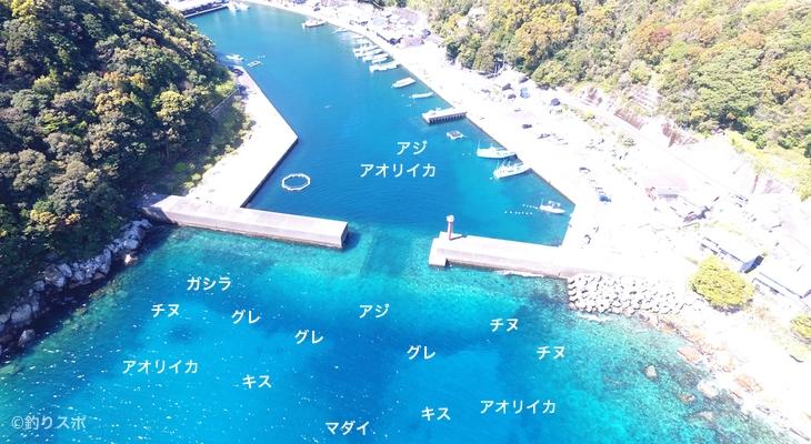梶賀港空撮釣り場情報