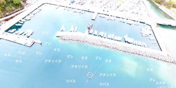 古和浦港空撮釣り場情報