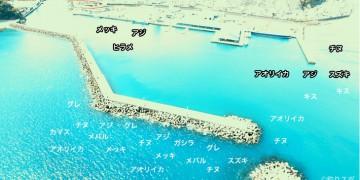 長島港空撮釣り場情報