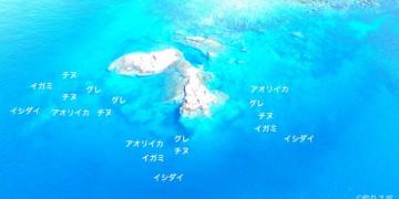オボレコボレ空撮釣り場情報