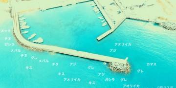 大曽根浦港空撮釣り場情報