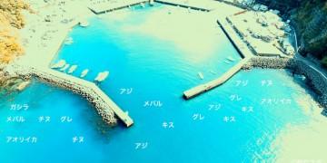白浦港空撮釣り場情報