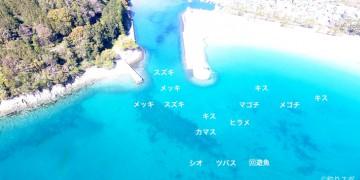 八十川河口空撮釣り場情報