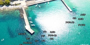 新鹿港空撮釣り場情報