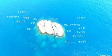 箱島空撮釣り場情報