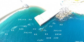 木本港空撮釣り場情報