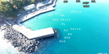 松崎港空撮釣り場情報