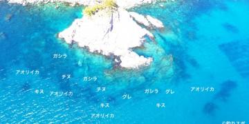 大和石空撮釣り場情報