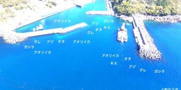 遊木港空撮釣り場情報