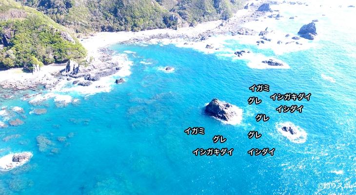 池島空撮釣り場情報