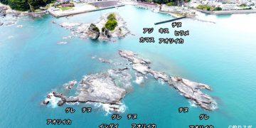小金島港空撮釣り場情報