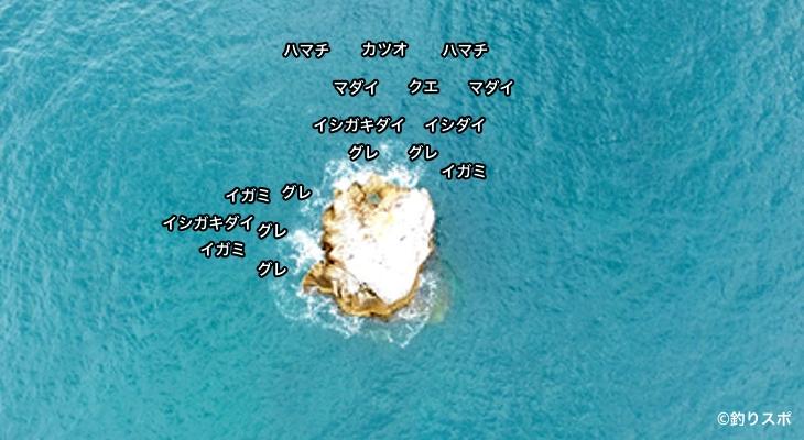 根子島空撮釣り場情報
