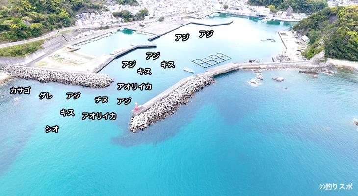 太地港空撮釣り場情報