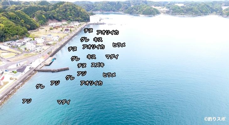 太地くじら浜公園空撮釣り場情報