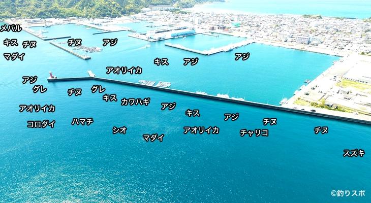 串本新港空撮釣り場情報