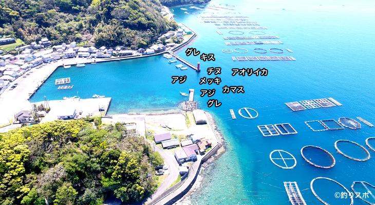 大島港空撮釣り場情報