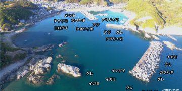 有田港空撮釣り場情報