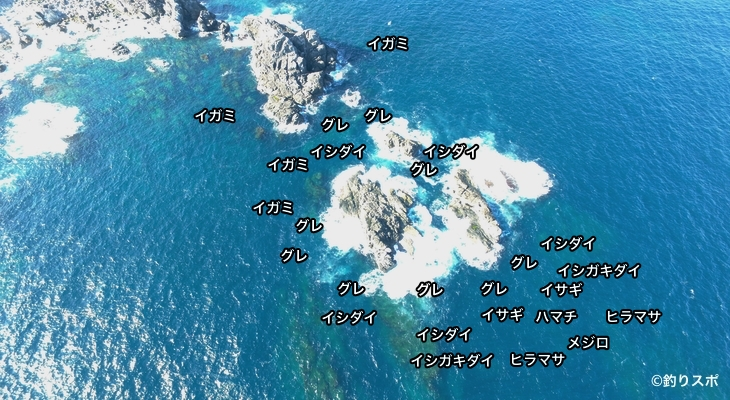 大ビラセ空撮釣り場情報