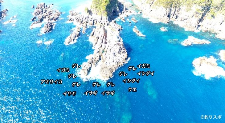 タカバミ空撮釣り場情報