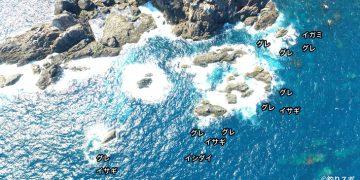 タカノ巣のアゼ空撮釣り場情報